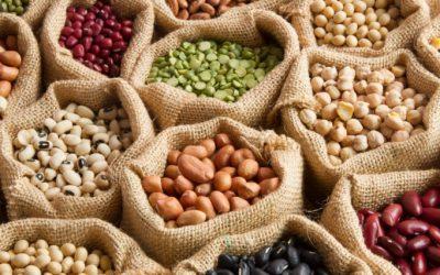 Fehérjében gazdag növényi ételek  vegetáriánusok számára is